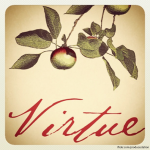 virtuecider